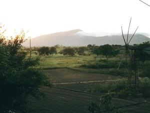 Early Morning Mist -Lassithi Plateau